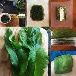 comfrey_symphytum_boneset_knitbone_sports_medicine_poultice_herbal medicine_for_injuries_toronto_naturopath_kensington_market10